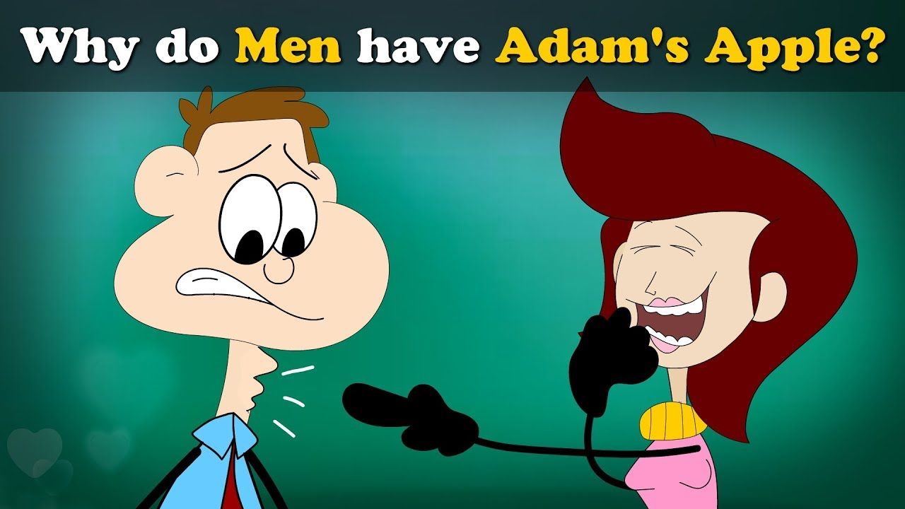 Why do Men have Adam's Apple? + more videos | #aumsum #kids #science #education #children