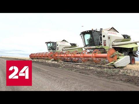 Из-за чего волгоградский депутат открыл огонь по местным фермерам - Россия 24