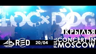 LOC-DOG в клубе RED! Полный концерт в Москве [20.04.2017]