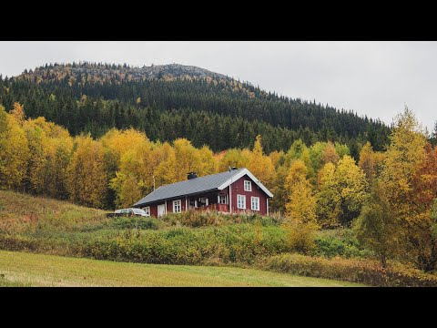 AUTUMN IN NORWAY | #11 living up north