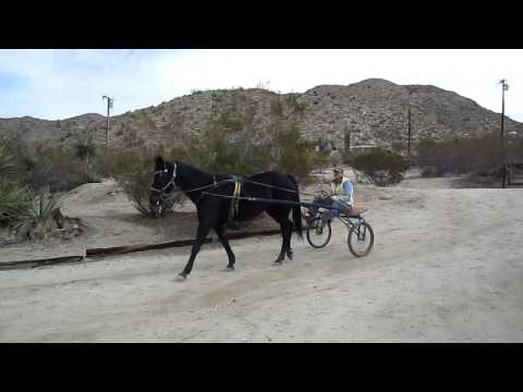 Just another day in Morongo Valley California.