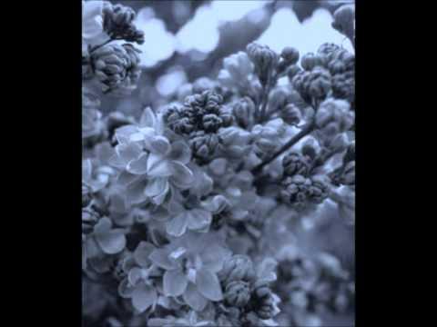 Kt Tunstall - Universe & U (acoustic version)