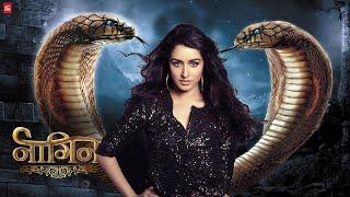 Nagin Movie, Shraddha Kapoor as Ichhadhaari Nagin, Box Office Collection Movie Corner,Nikhil Dwivedi
