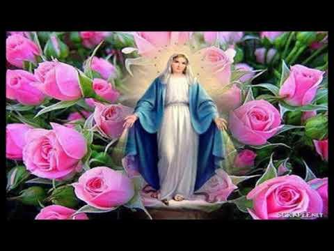 Terço de Nossa Senhora das Graças e da Medalha milagrosa