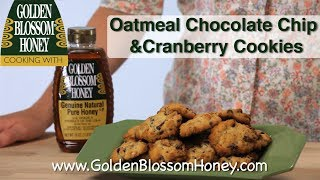 Oatmeal Chocolate Chip & Cranberry Cookies