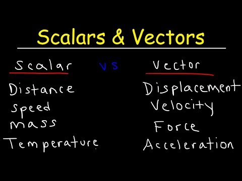 Scalars and Vectors Physics Video - Scalar vs Vector Quantit