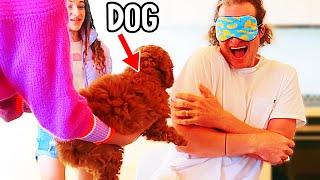 WE GOT A DOG (emotional)