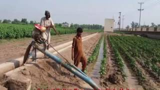 fertlizer players in pakistan The efficient and responsible production, distribution and use of plant nutrients play a vital role in achieving global food security and sustainable development as the only international association for the global fertilizer industry, ifa promotes.