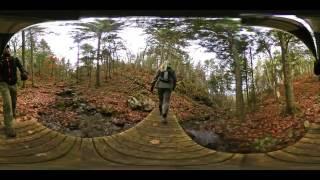 360 Spherical ~ Mapleton Acadian Forest Trial