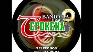 El Tamarindo, Banda La Tepokeña en vivo