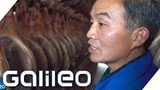 Der Luxus-Schinken aus China   Galileo   ProSieben