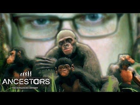 НАЧАЛЬНИК СТАИ ► Ancestors: The Humankind Odyssey #3