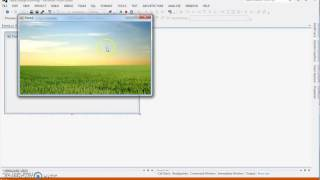 How to Change Background Images Repeatedly in C# Net
