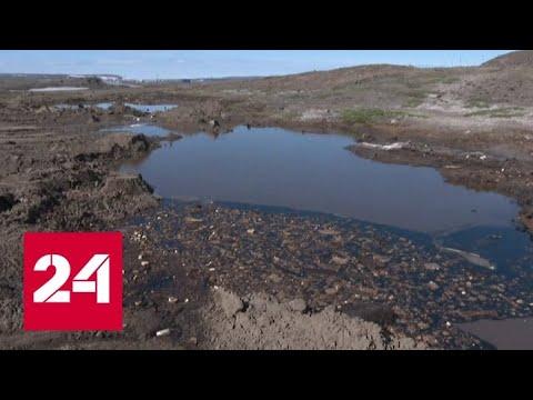 Последствия экологической катастрофы в Норильске ликвидируют круглые сутки - Россия 24