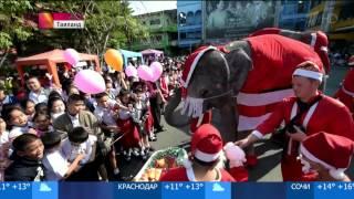 видео Католическое Рождество в разных странах