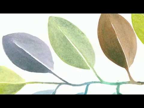 QoR Cobalt Green Watercolor