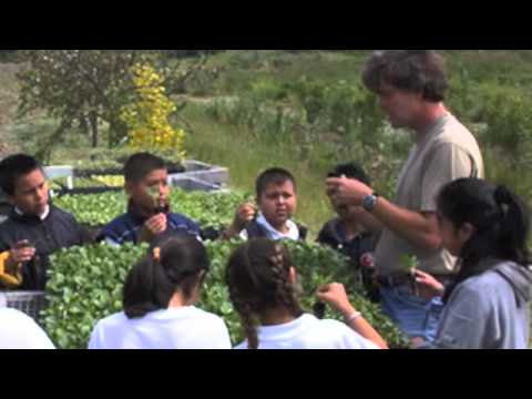 video:ground swell : the live earth farm discovery program