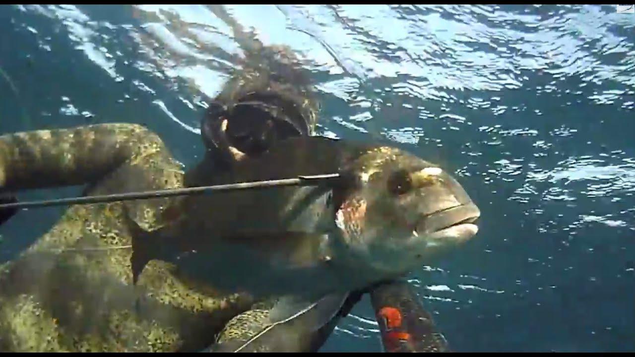 Pesca in dare