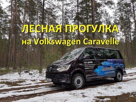На Volkswagen Caravelle по лесу