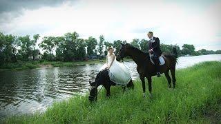 Свадьба Вячеслава и Алины