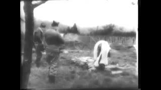 Нацистские концентрационные лагеря18+  1945