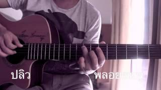 ปลิว-พลอยชมพู Fingerstyle cover by Toeyguitaree (tab)