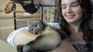 Monkey Freakin HAPPY!