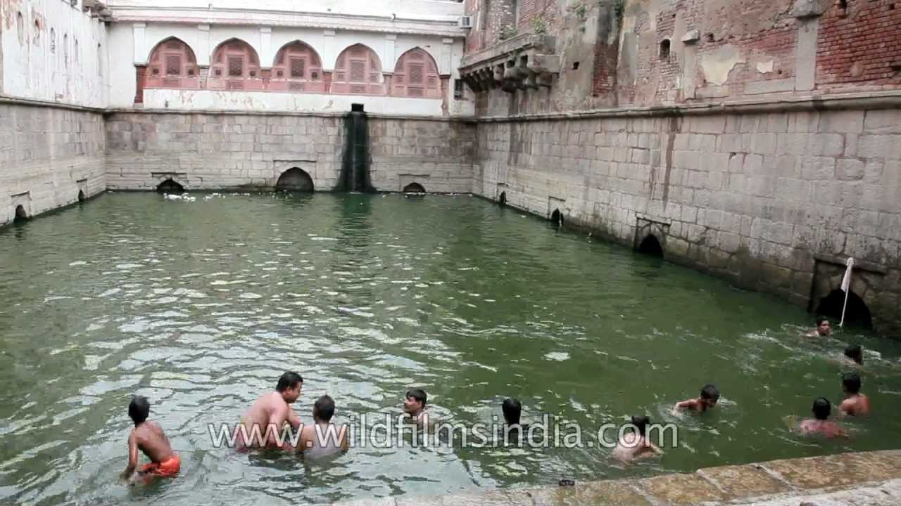 Boys Enjoy A Summer Swim In An Ancient Step Well In India Youtube