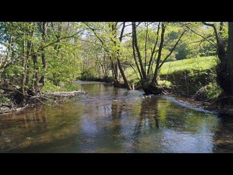 Ein Fluss in fünf Akten - Hinter den Kulissen der Ahr | Fahr mal hin | SWR Fernsehen