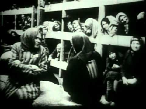 Holocaust- The Liberation Of Auschwitz