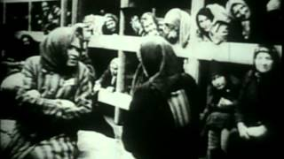 Holocaust- The Liberation Of Auschwitz