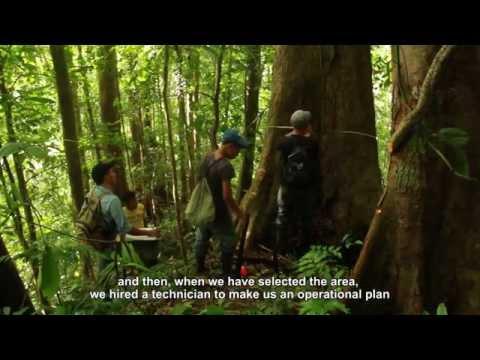 Forest Stewardship Council - FSC HONDURAS - English Subtitles