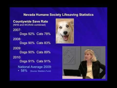 Marketing the Treatable Pets - Every Creature Has a Story - Full video
