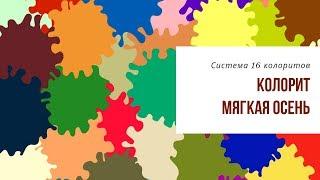 Комбинатор цвета для колорита Мягкая Осень. Система 16 колоритов. Академия Свое Лицо.