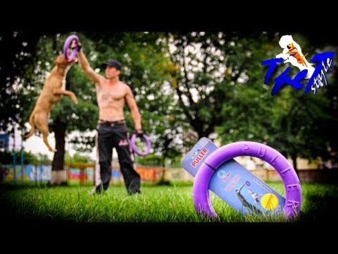 PULLER - Тренажер для собаки.(rus)