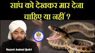 Kya Saap (Snake) Ko Dekhne Par Mar Dene Chahiye   Sayyed Aminul Qadri