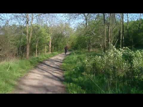 bike trail in Cambridge