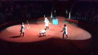 Лаборатория. Групповой жонгляж. Россия(Номер «Лаборатория» цирковой студии «Ровесник на Неве» выдвинут на премию