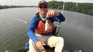 Turning Bass into Catfish: Constant Catfishing Action