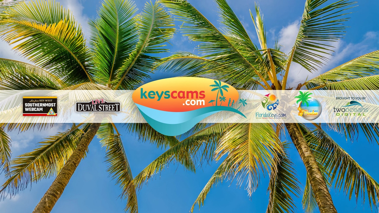 Live From Key West - Galleon Resort