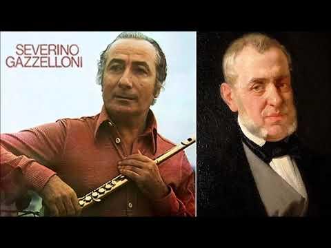 Saverio Mercadante (1795-1870)  Flute Concerto in E minor