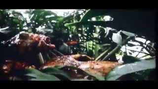 Chupacabra l'une des créatures Alien de Colombie