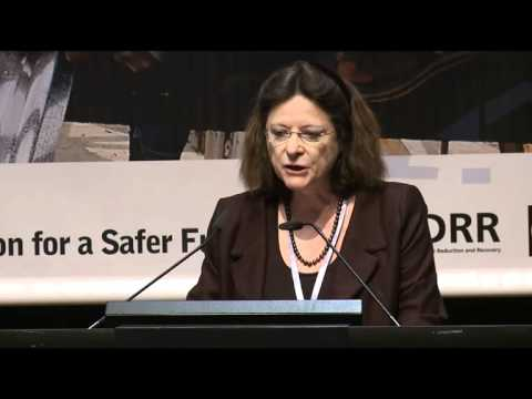 Joint Summary of the 3rd Global Platform for Risk Reduction
