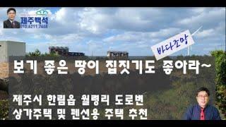 제주 한림읍 팬션 상가주택용 토지 매매_한림읍 월령이 …
