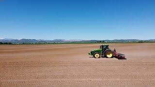 Colorado Pinto Bean Planting 2021