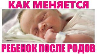 НОВОРОЖДЕННЫЙ РЕБЕНОК В ПЕРВЫЕ СУТКИ ПОСЛЕ РОДОВ Как меняется младенец в первые сутки после родов