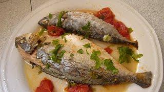 Рыба в Аквапаца Италия Pecshe in  Aqcua Pazza