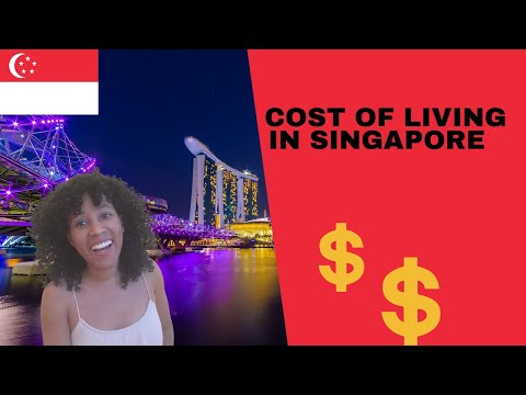 HOW MUCH MONEY DO YOU NEED TO LIVE IN SINGAPORE