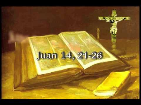 Evangelio De San Juan 14 21 26 Youtube