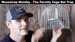 The Farmily Cage Rat Trap & A Skunk Spraying An Opossum. Mousetrap Monday